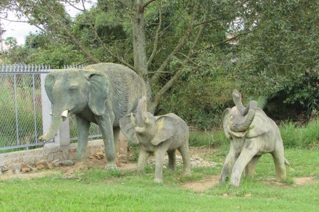 Thác voi thì phải có Voi :D